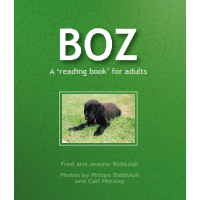 Boz: A 'reading book' for adults